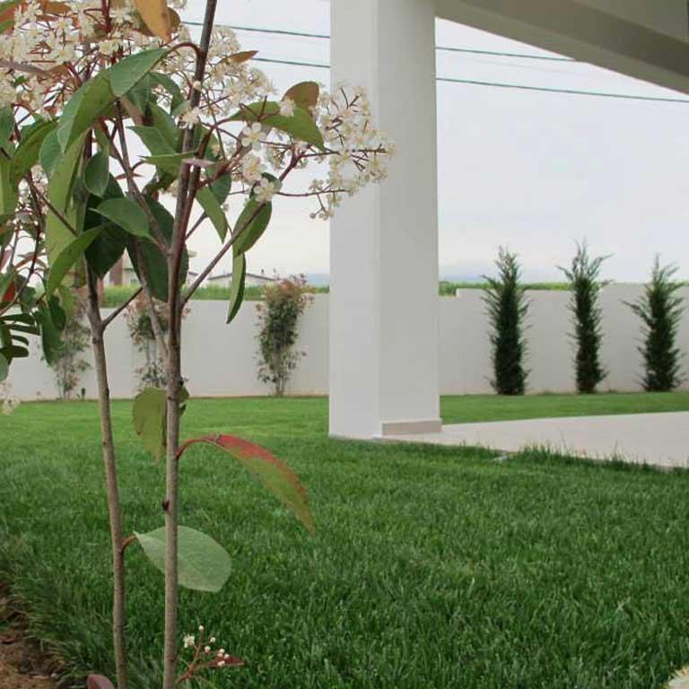 Αρχιτεκτονική Κήπων